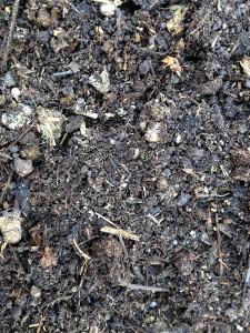 Das war mal Bioabfall - jetzt ist es Erde. Der Verrottungsprozess hat prinzipiell also funktioniert.